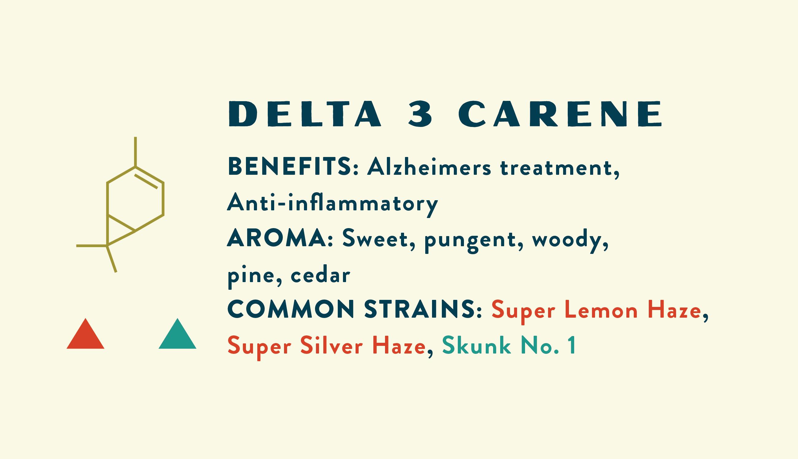 Delta 3 Carene Information