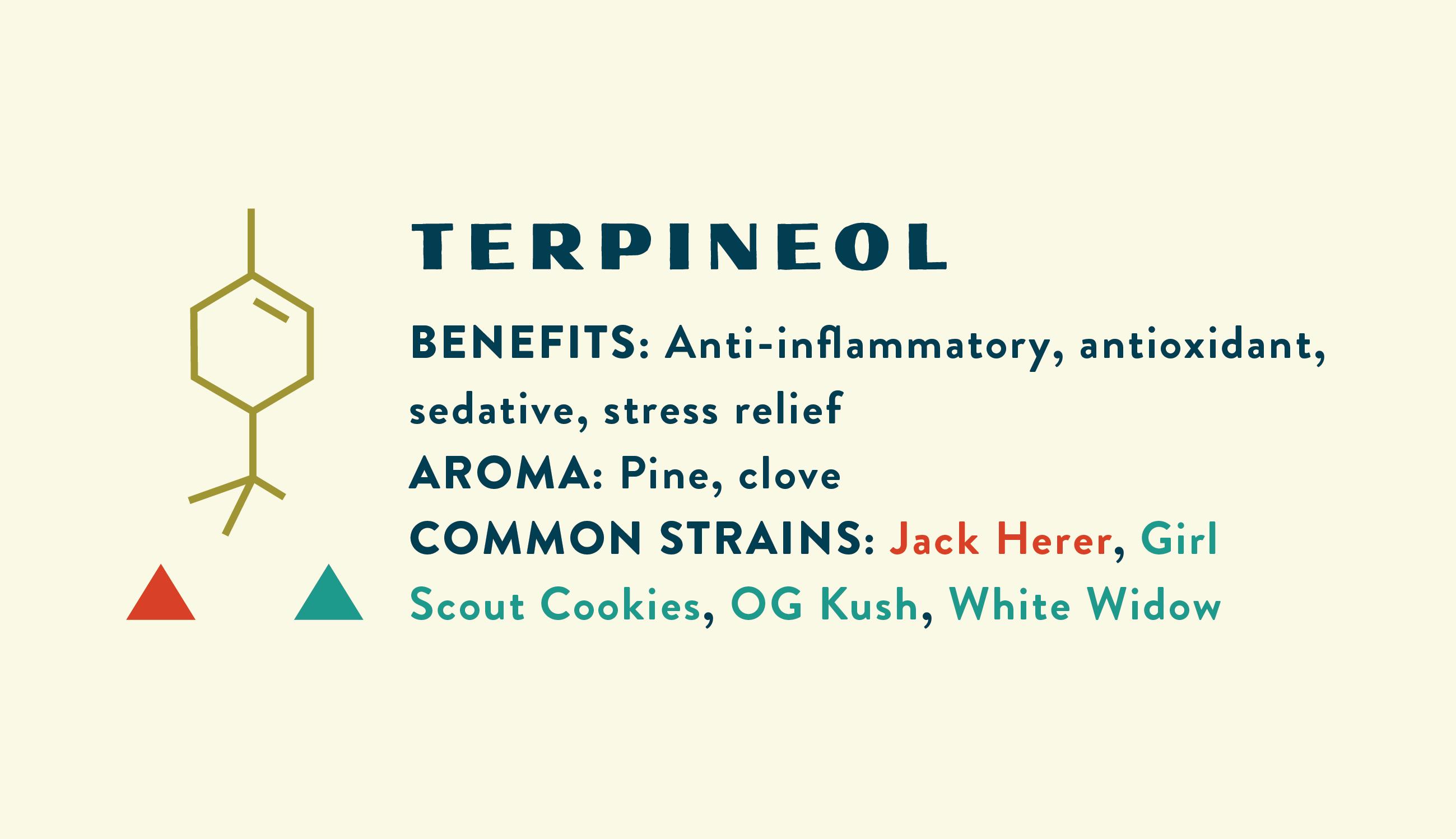 Terpineol Information